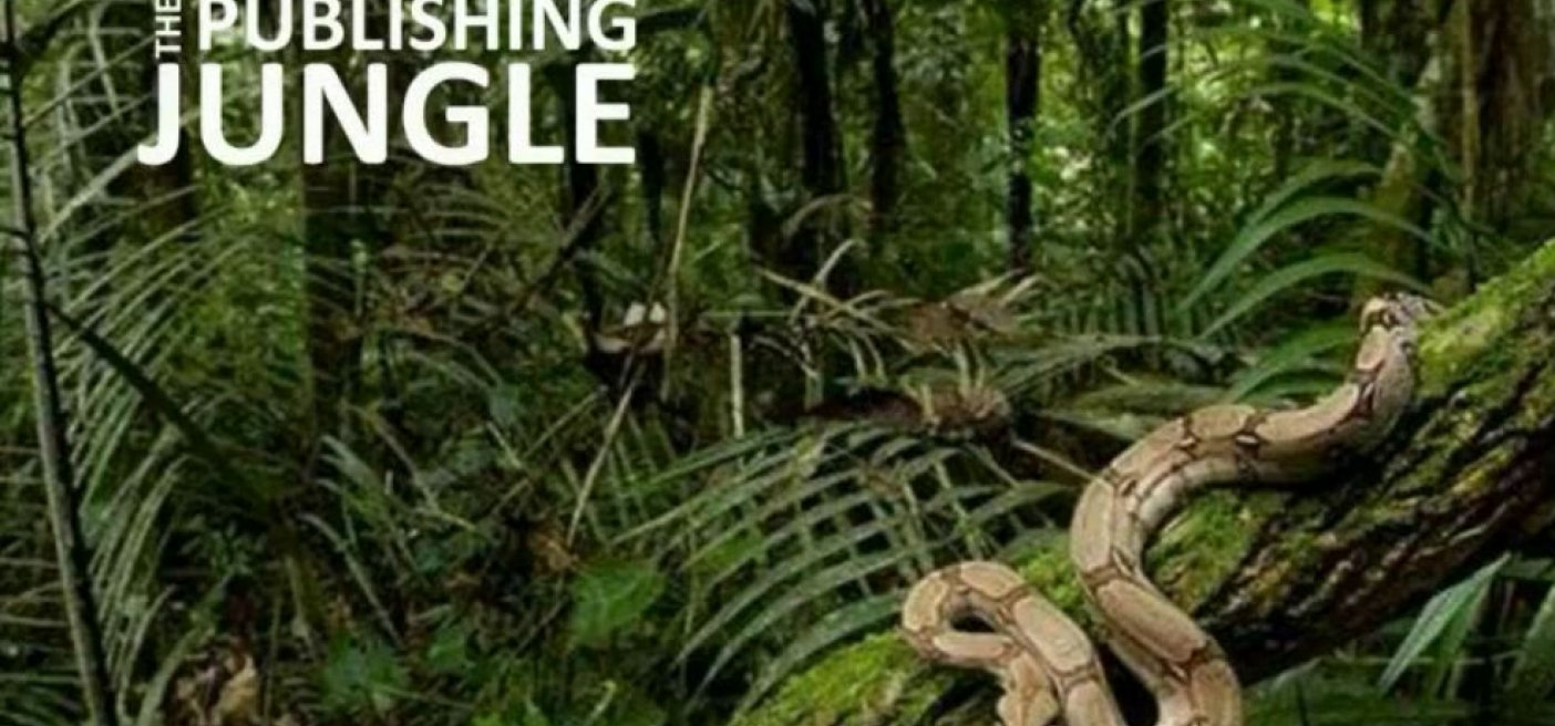 The Publishing Jungle Video Series – Part One